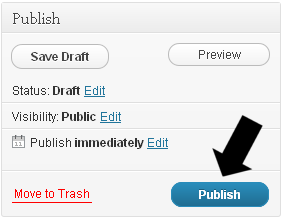 Publishing Your First WordPress Post
