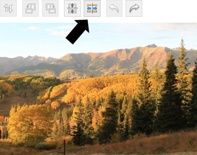 WP image editing view prior to a flipping reflection filter action