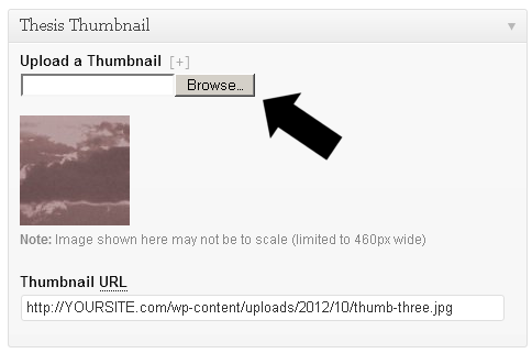 Uploading a Manual Thumbnail Image in Thesis 2.0 Posts