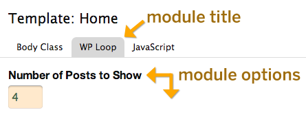 Thesis template options