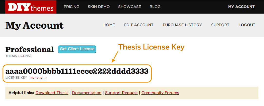 Thesis license key