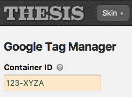 Google Tag Manager options
