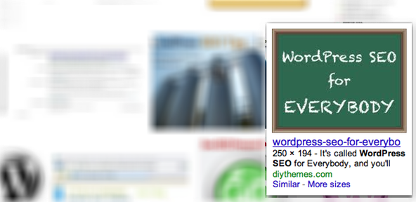 WordPRess SEO Example Search Results